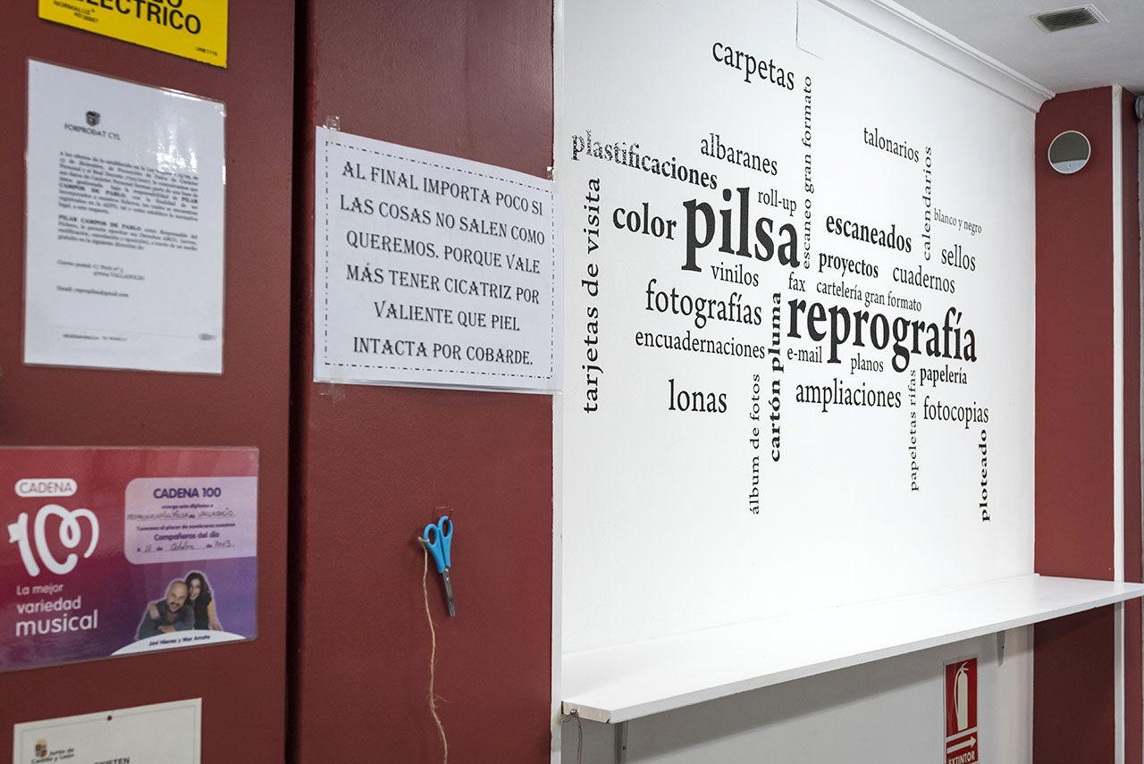 repropilsa.es - galería